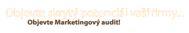 Marketingový audit